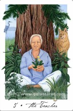 Gaian Tarot The Teacher